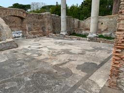 Ostia Antica mosaici - 8